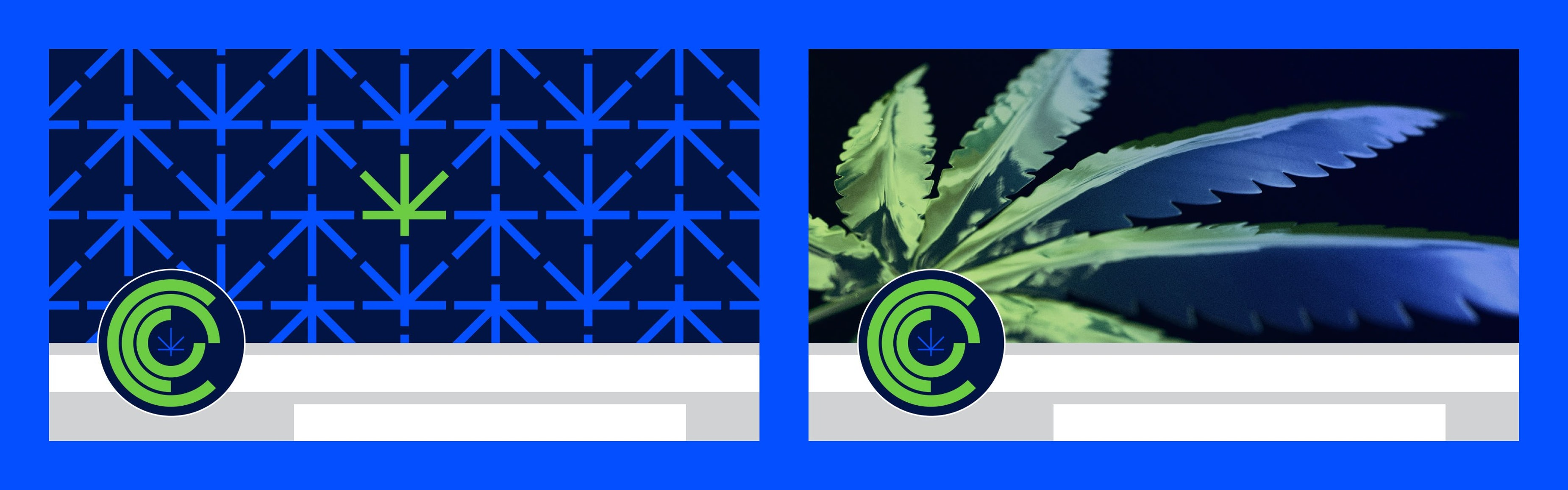 CCC Chicago Cannabis Council Branding Social Media Chicago Graphic Design Span