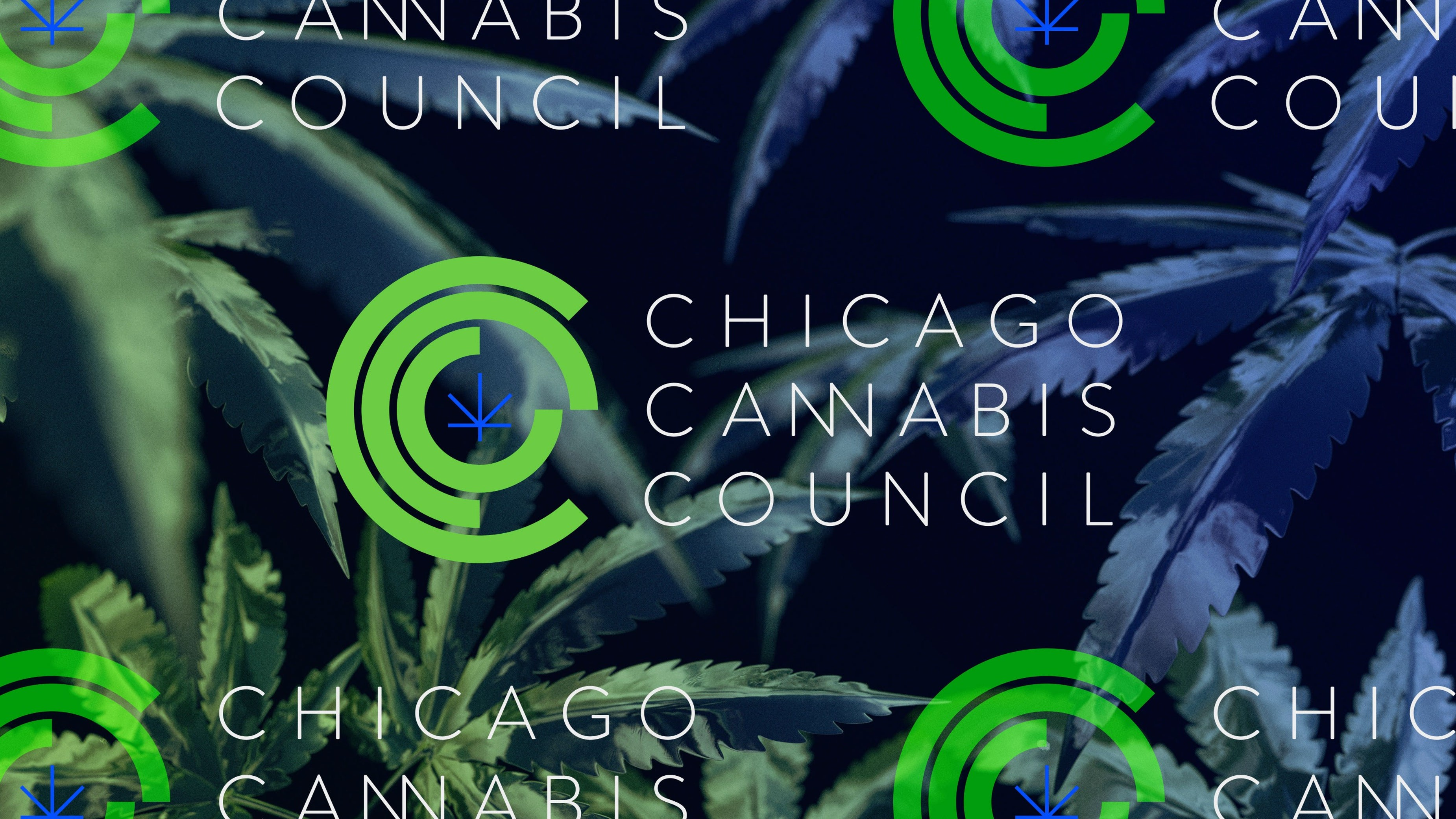 CCC Chicago Cannabis Council logo Chicago Graphic Design Span